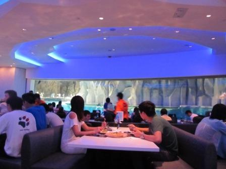 Inside the Tuxedo Restaurant, Ocean Park Hong Kong.  See the big glass window?  That's where you can see all the activities of the cute little penguins