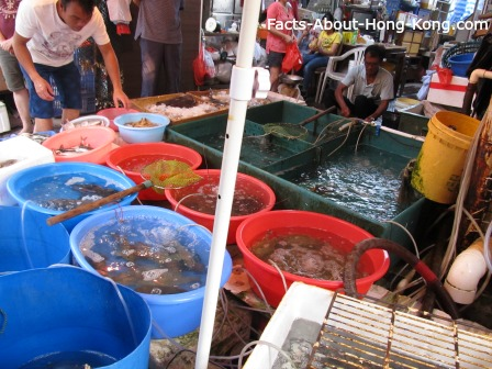 Seafood for sale in Lantau Island, Hong Kong