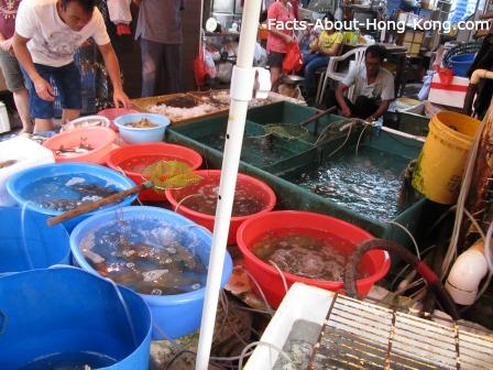 Seafood for sale in Lantau Island, Hong Kong