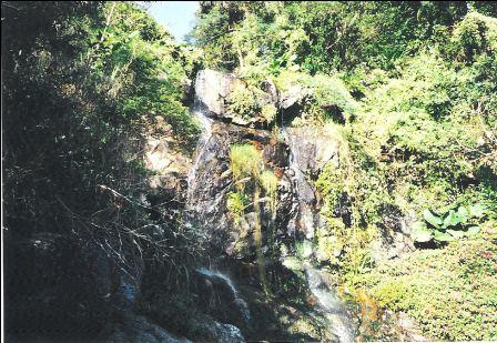 Hong Kong Peak, Lugard Road rapid