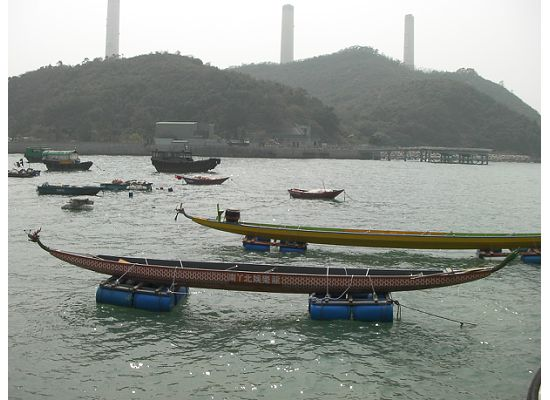 Dragon boats in Hong Kong Lamma Islan
