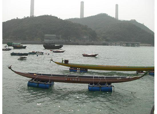 Dragon Boats in Lamma Island