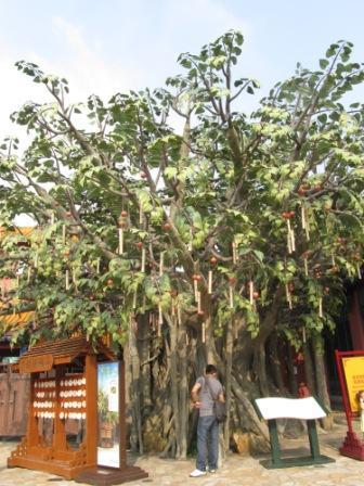 Replica of Hong Kong Lam Tsuen Wishing Tree in Ngong Ping Village
