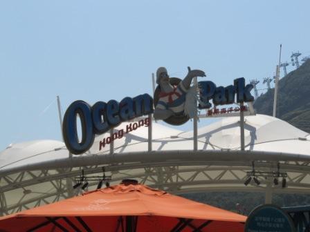 Speed dating ocean park