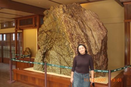 Nan Lian Garden 2007