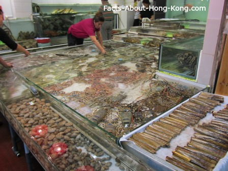 Hong Kong Seafood Restaurants Fish Tank