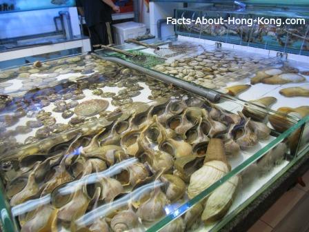 Vast array of shellfish in Lei Yue Mun, Hong Kong